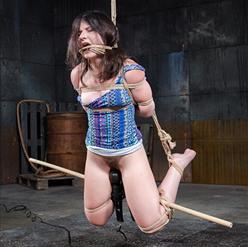 Amy Faye face down in hog tie on floor