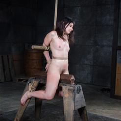 Dildo violates Amy Faye's tight pussy