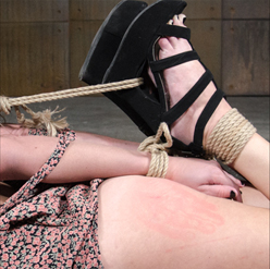 Rope bondage pulls Sasha Hearts arms and legs into the air