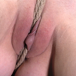Matt Williams pinches Katy Kiss's nipples ball gag