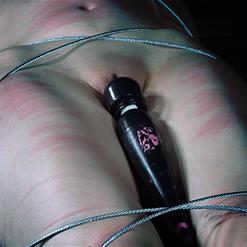 Sierra Cirque held standing immobile in metal bondage