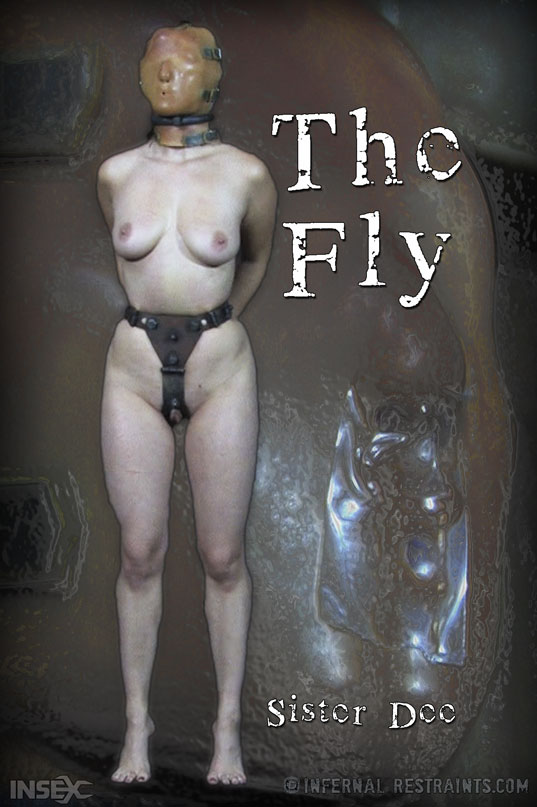 Sister Dee in The Fly on InfernalRestraints.com