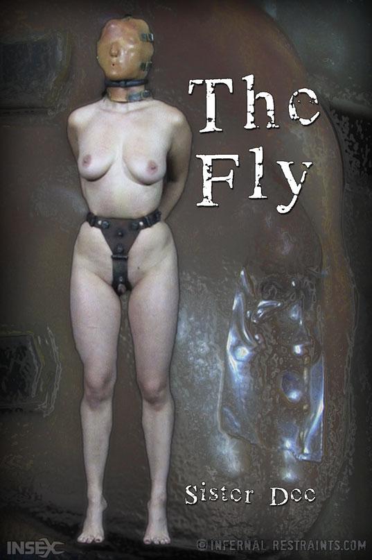 Sister Dee in The Fly on InfernalRestraints.com