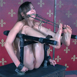 Barbed Wire head cage keeps Zoey Laine compliant