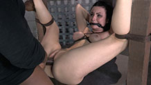 Huge black cock anally fucks a bound and gagged Veruca James