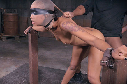 Sexuallybroken Skin Diamond AVN winner fucked and bound