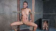 Nikki Darling sits in rope bondage with nipple clamp weights