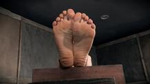 Lorelei Lee's toes tied in foot bondage