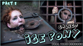 Ice Pony I