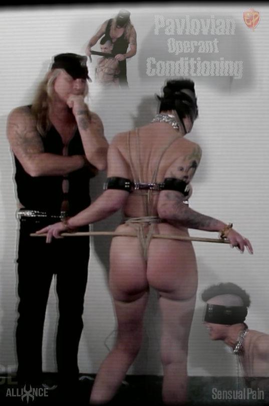 Pavlovian Operant Conditioning · Abigail Dupree sensualpain.com -  2019-02-20. Buy: 14.99 credits
