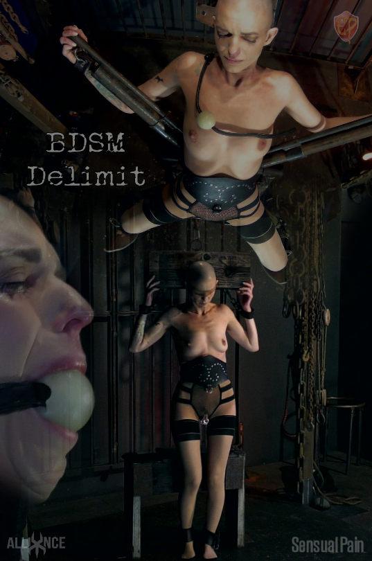 BDSM Delimit · Abigail Dupree sensualpain.com - 2019-04-17. Buy: 19.99  credits