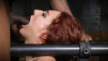 Bound Savannah Fox deepthroats BBC