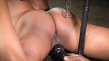 Chained Kira Noir worships huge black cock